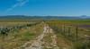 Road (Bilel Tayar) Tags: road route champs ferme nature verdure green paysage landscape algeria algerie benazzouz skikda nikon nikond5200 sky ciel bleu exterieur sortie randonée