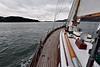 Sailing, Sailing... (AGrinberg) Tags: 62273bounty sailing sail boat sfbay goldengatebridge ggb birds spar bounty