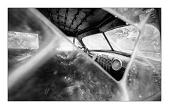 (floguill) Tags: leica mp 15mm voigtlander kentmere 100iso lc29
