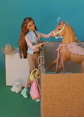 True Love 💙 (Lo_zio87_Barbie Collector) Tags: asiandoll fashonistas fashionistasfashions becky maledollcollector horse dixie 80s 2017 love pet smile