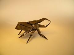 Hercules Beetle - Jo Nakashima (Rui.Roda) Tags: origami papiroflexia papierfalten besouro beetle jo nakashima