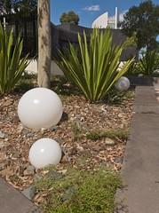 Burwood, Melbourne, Vcitoria, Australia 2017-03-25 13:54:05 (s2art) Tags: gestural intuitive iphone burwood melbourne victoria australia universit university deakinuniversity landscape newtopographics australiannewtopographics suburbs suburbia domes glodes oranmanets ornaments gumtree oasis balls ballz globes auspctaggedpc3125 burwoodpc3125 pc3125