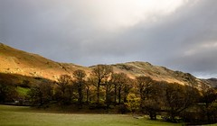 Last of the sun on the fellside (allybeag) Tags: patterdale hartsop ullswater path trees light placefell fells evening sunlight craggy