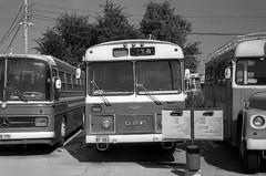 Eged Bus Museum (Ilya.Bur) Tags: canon p nikkor 5cm f2 neopan acros 200 caffenolcl 50min20c eged bus museum holon israel daf analog vintage