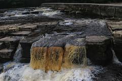 52 in 2017 Challenge - #5 - Liquid (crafty1tutu (Ann)) Tags: challenge 52in2017challenge 5liquid water waterfall trip travel holiday unitedkingdom uk richmond northyorkshire crafty1tutu canon7dmkii canon24105lserieslens anncameron river