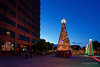 20171118-02-Hobart Christmas Tree (Roger T Wong) Tags: 2017 australia christmastree hobart mawsonplace rogertwong sel1635z sony1635 sonya7ii sonyalpha7ii sonyfe1635mmf4zaosscarlzeissvariotessart sonyilce7m2 tasmania lights night