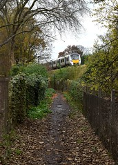 Recreational Pursuits (..Jim) Tags: class700 electric railway train trees path leaves