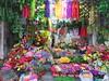 Vietnam - Hanoi - Old Quarter - Flower shop (JulesFoto) Tags: vietnam hanoi oldquarter shop