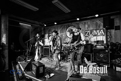 2017_11_24 Bosuil Zuma – Neil Young tribute ZPG_4577-Johan Horst-WEB