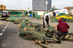 Gita a Howth (Dublino) - 032 (giannizigante) Tags: dublino howth irlanda porto gabbiani seagull pesca pescatori pesce