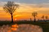 Unser Niederrhein (jwfoto1973) Tags: niederrhein landschaft landscape germany deutschland sonnenuntergang sunset bokeh mühle mehr mill tree baum johannesweyers nikon d7100