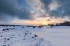Winter @Veluwezoom #dePosbank (nldazuu.com) Tags: winterselucht sneeuwpret natuur winter heath sneeuwvlokken sneeuwbui winterlandschap zijpenberg heidelandschap rheden landschap nldazuufotografeertcom natuurmonumenten davezuuring herikhuizerveld sneeuw heide bomen posbank gelderland wintersebui