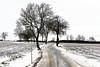 Winter road (GerWi) Tags: mislareuth winter strase schnee snow schneewehen fz1000 felder schneedecke