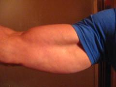 FLEXING BIG BULGING BICEPS (flexrogers963) Tags: muscle muscular muscles massive mondojacked musclemodel 18inchbiceps guns 18inchbicep 18inch frontalpose vein bigguns flexing curling veins bodybuilding round bodybuilder bigbiceps baseballbiceps bizep big bizeps abs hugebiceps wellbuilt biceps bicep welldeveloped chest pecs jacked rockhard exercise flex shoulders delts ripped fit weightlifter huge workout peak pose traps lats mondo bodybuild bodyboulder fitness gym gross