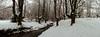 Otzarreta IV (joseba71) Tags: verde gorbea hayedo naturaleza nieve niebla otzarreta paisaje gorbeia fog snow rain panorama parquenatural paisvasco euskadi españa nature landscape panoramica natural park fujifilm fuji xt2 xf 1655