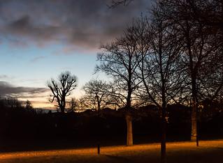 Nightlight and Daylight