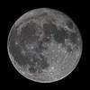 Super Full Moon (Brian E Kushner) Tags: december 2017 december2017 december32017 super full fullmoon astronomy astrophotography newjersey audubon nikond850 d850 nikonafsnikkor800mmf56efledvrlens nikon afs nikkor 800mm f56e fl ed vr lens tc800125e tc800125eed