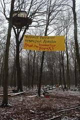IMG_1995 (ihambi) Tags: hambi hambacherforst hambach hambacher kohleprotest earthfirst kohle occupation forestoccupation forest co2 coal climatechange climatecamp climate braunkohle breakfree solidarity