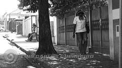 DSC07395 (O KDUKO) Tags: araraquara blackandwhite blackandwhitephotography pictureoftheday blackandwhitephoto photography bnwcaptures monochrome monochromatic instablackandwhite monoart instabw bw bwstylesgf artgallery visualart bwphotooftheday photoshoot bwstyleoftheday aesthetics streetphotography arts