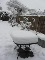 Snowy December 2017 (wonky knee) Tags: shrewsbury shropshire winter snow icicles garden