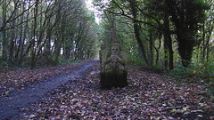 Stone bench carving next to trackbed, Silkstone Common   (Silkstone - Wath old railway)    October 2017 (dave_attrill) Tags: carving stonebench great central railway electrified woodhead sheffield victoria manchester picadilly closed 1970 1955 stocksbridge engine transpennine upper don trail penistone wortley wadsley neepsend dunford bridge thurgoland tunnel oxspring barnsley junction huddersfield allweather cycleway bridleway footpath remains silkstone 2016 1981 dove valley no1