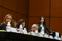 Verónica Delgadillo (verodelgadillog) Tags: movimientociudadano movimiento movimientonaranja diputadafederal diputados ciudadanos diputadosciudadanos distrito8