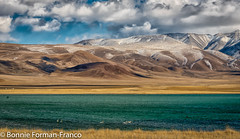 20170929_MONGOLIA_20170929-BFF_2172SAGSAI and YELLOW LAKE-Edit-Edit (Bonnie Forman-Franco) Tags: mongolia mongoliahighlights remotecountry hooperswans swans lake outdoors photography photographybywomen photographer outdoorphotography outdoorphotographer photoladybon bonnieformanfranco exploretheworld travelphotography travelphotographer traveldeeper clouds sky landscapes landscapephotography yellowlake altimountains