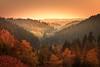 """Autumn sunset ... Bavarian Forrest, Germany (nigel_xf) Tags: gutfeuerschwendt """"bavarian forest"""" """"bayrischer wald"""" niederbayern sunset sonnenuntergang mist fog nebel sun sonne abendsonne deutschland germany bayern bavaria """"ferien mit hund"""" """"holiday with dog"""" nikon d750 nigel nigelxf vsfototeam forest wald bäume trees tannen herbst autumn herbstfarben """"autumn colors"""" landschaft landscape berge hügel hills mountains """"neukirchen vorm"""
