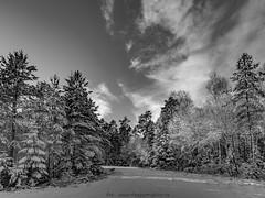 20171119003996 (koppomcolors) Tags: koppomcolors värmland varmland sweden sverige scandinavia skog forest winter vinter snö snow