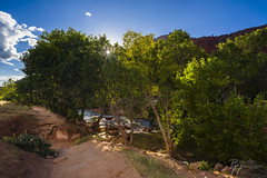 Zion National Park (HelBen85) Tags: grã¼n sony alpha alphaddicted alpha7ii a7ii travel usa us springdale zion national park river watchht mountain water autumn sunset sunriseman trail 21mm loxia zeiss