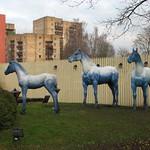 Blue_horses.Riga thumbnail