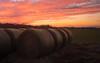 Hay Bales and sunsets (Theresa Rasmussen) Tags: firstdayatchancellorsville firstdayatbattleofchancellorsville chancellorsvillebattlefield chancellorsville sunset barn haybales orange skies clouds pinkclouds