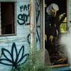 Eagle has Landed (interrailing) Tags: menacingpanda mask panda eagle abandoned trailerpark quarry ohio