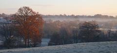 A la croisée des saisons (martine_ferron) Tags: automne hiver paysage geléeblanche arbre brume matin bocage