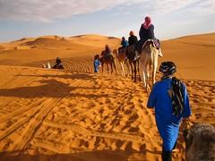 Caravan (David K. Edwards) Tags: camel bedouin ride sahara desert sunset camp encampment tracks bluemen morocco