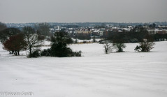 No Golf Today (M C Smith) Tags: pentax k7 houses suburbia golf course bushes clouds grey flats slope trees