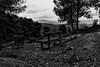 Bench (El s@lmón) Tags: banco bench mirador desierto