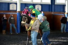 "2017-12-11 Laurel Park (JimFleenor) Tags: photos photography md marylandracing maryland marylandhorseracing jockey جُوكِي ""赛马骑师"" jinete ""競馬騎手"" dżokej jocheu คนขี่ม้าแข่ง jóquei žokej kilparatsastaja rennreiter fantino ""경마 기수"" жокей jokey người horses thoroughbreds equine equestrian cheval cavalo cavallo cavall caballo pferd paard perd hevonen hest hestur cal kon konj beygir capall ceffyl cuddy yarraman faras alogo soos kuda uma pfeerd koin حصان кон 马 häst άλογο סוס घोड़ा 馬 koń лошадь laurelpark westonhamilton"