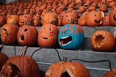 Mr Meeseeks from rick and morty. (W A P) Tags: ky lexington fujifilm x100f rickandmorty transylvania university kentucky meeseeks mr orange blue pumpkin halloween 2017 fallcolors fall october