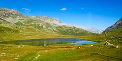 Bernina Express, suite (2) (8pl) Tags: lac reflets flanc prairie suisse grisons berninaexpress tourisme vert bleu roches tapisnaturel