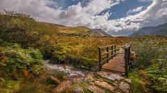 A gentle walk... (Einir Wyn Leigh) Tags: landscape walk colorful autumn rural vibrant river stream water clouds nikon path sunlight light foliage valley snowdonia wales cymru uk gold bridge outside