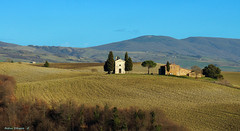 Chapel of Vitaleta (Darea62) Tags: landscape nature valdorcia chapel hills paesaggio tuscany vitaleta toscana sanquiricodorcia siena panorama unesco travertino cypress farmhouse trees agriculture cultivation pienza