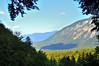 (igor.souto) Tags: bohinj slovenia eslovenia montains cloud sky trees shadow