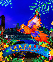 Christmas Carnival - Carnaby Street, London, UK (davidgutierrez.co.uk) Tags: london photography davidgutierrezphotography city art architecture nikond810 nikon urban travel color night blue photographer christmas londonphotographer people uk england unitedkingdom europe beautiful cityscape davidgutierrez britain greatbritain d810 street arts buildings nikon2485mmf3545gedvrafsnikkor nikon2485mm iconic landmark 伦敦 londyn ロンドン 런던 лондон londres londra capital structure building colors colourful colours colour streets attraction bluehour twilight dusk lights light contemporary modern vibrant road streetphotography cityofwestminster westend shopping festive celebrate merrychristmas xmas christmaslights merry merryxmas carnabystreet soho neon bird