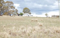 110 Pipe Clay Springs Rd, Bombala NSW