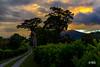 Baru Sunset (Luis A Huerta M) Tags: jaramillo provinciadechiriquí panamá pa luishuerta boquete baru