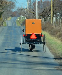 Heading to Town. New Wilmington, PA (bobchesarek) Tags: buggy amish padutch rural country pennsylvania
