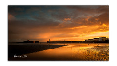 Morning Gold (RonnieLMills) Tags: sunrise early morning dawn sun rise golden light reflections sand shore donaghadee harbour lighthouse county down northern ireland