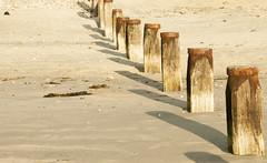 Groynes (dianadriver) Tags: groynes beach sand