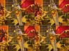 LIMG_1859 (qpkarl) Tags: stereo stereogram stereoscopy stereophotography stereographic stereoscope stereography stereograph stereoscopic stereoview stereophoto 3d